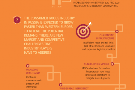 Russian Consumer goods industry Infographic