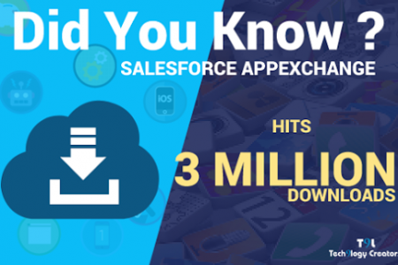 SalesForce Development Gurgaon Infographic