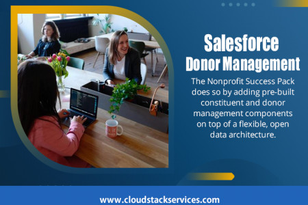 Salesforce Donor Managements Infographic