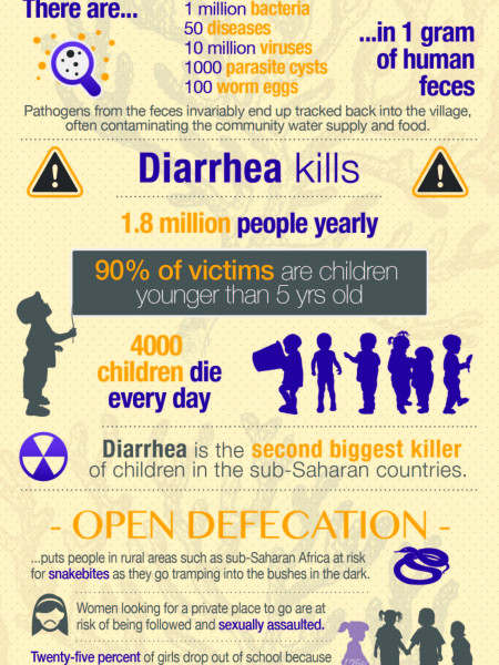 Sanitation crisis in Africa Infographic