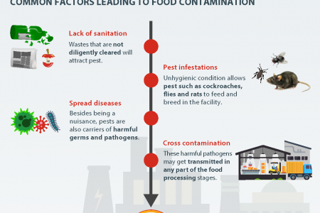 Sanitation Practices to Minimise the Risk of Food Contamination Infographic
