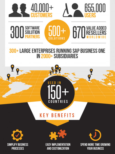 SAP Business One Success Story Infographic