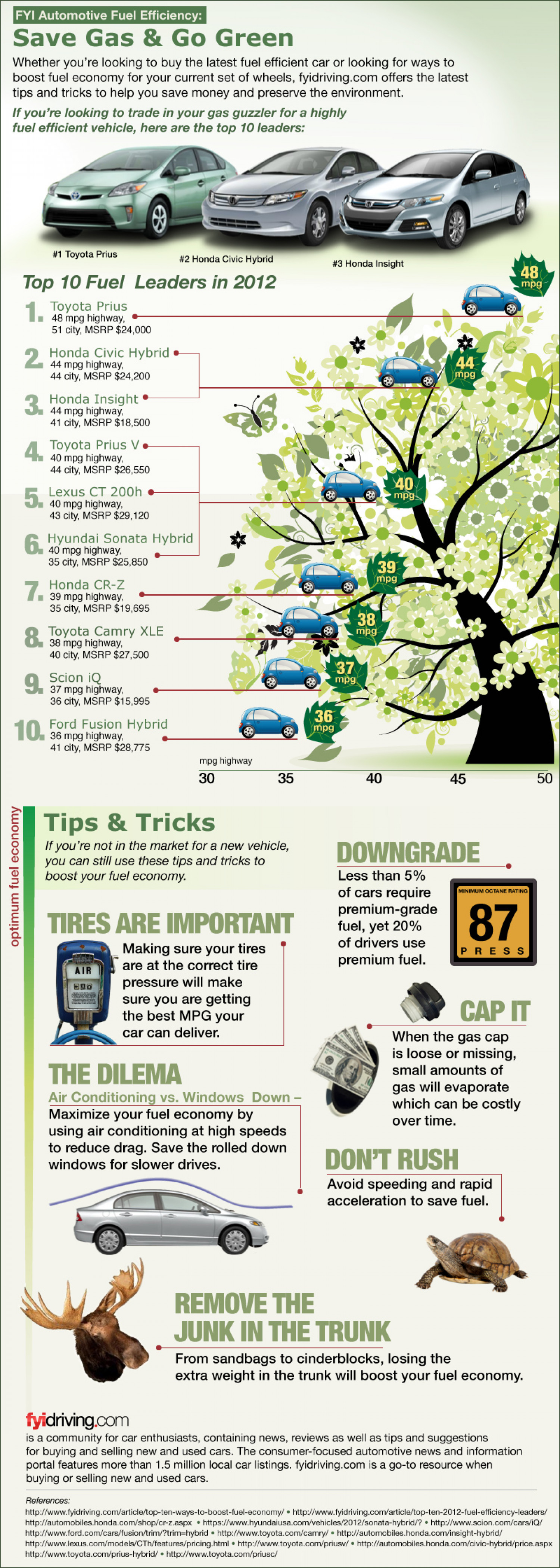 Save Gas and Go Green Infographic