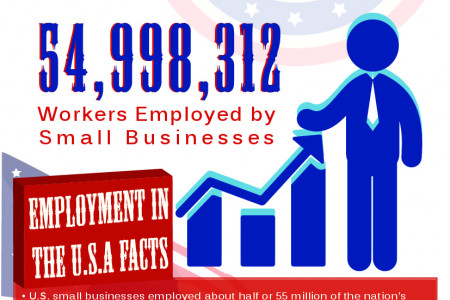 SBA.gov's Small Business Profiles in 2013 Infographic