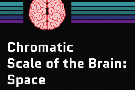 Scale of the Brain: Space Infographic
