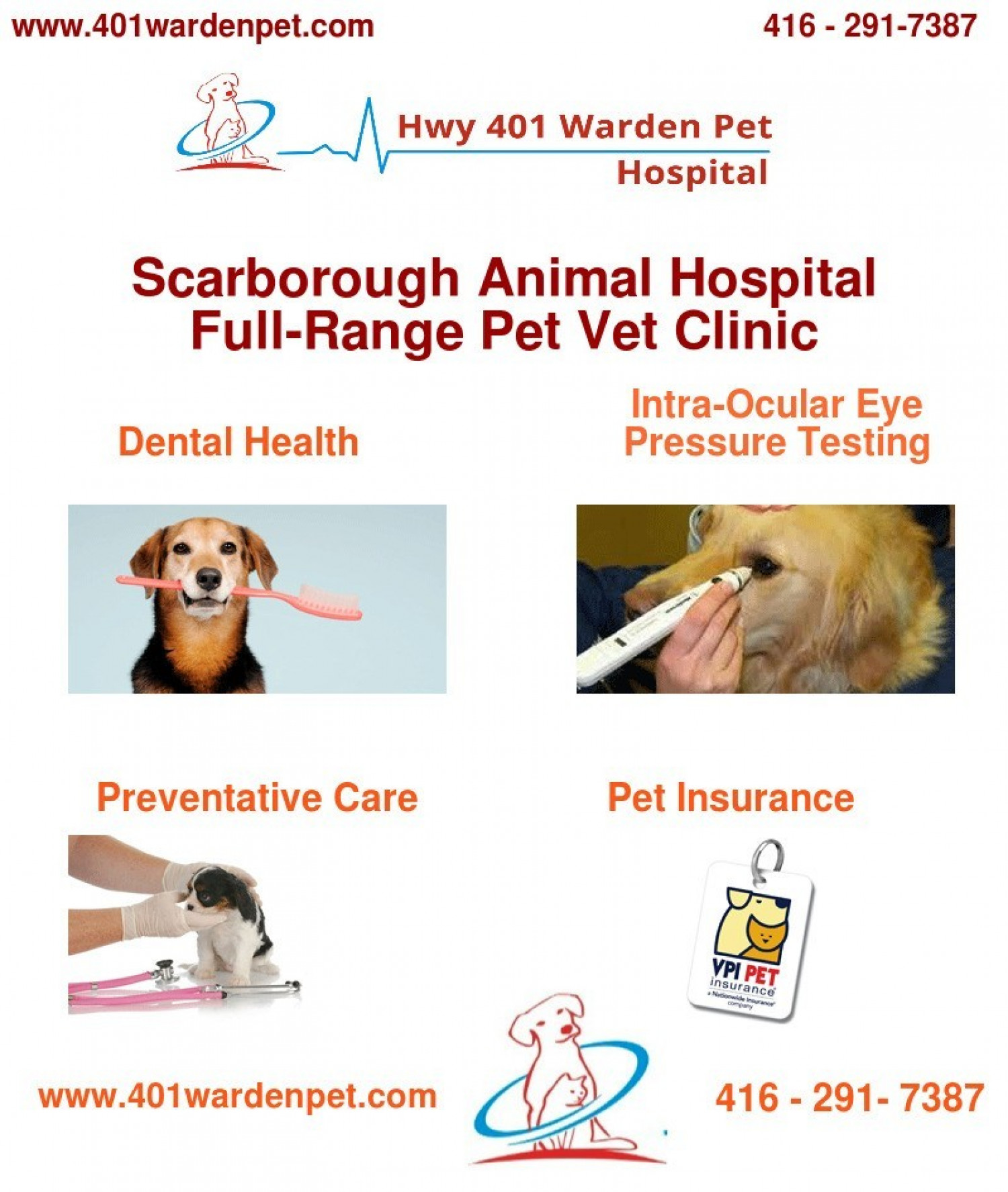 Scarborough Veterinary Hospital | Hwy 401 Warden Pet Infographic