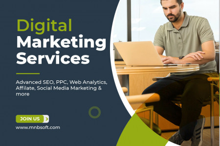 Search  Engine Optimization Services Provider Infographic