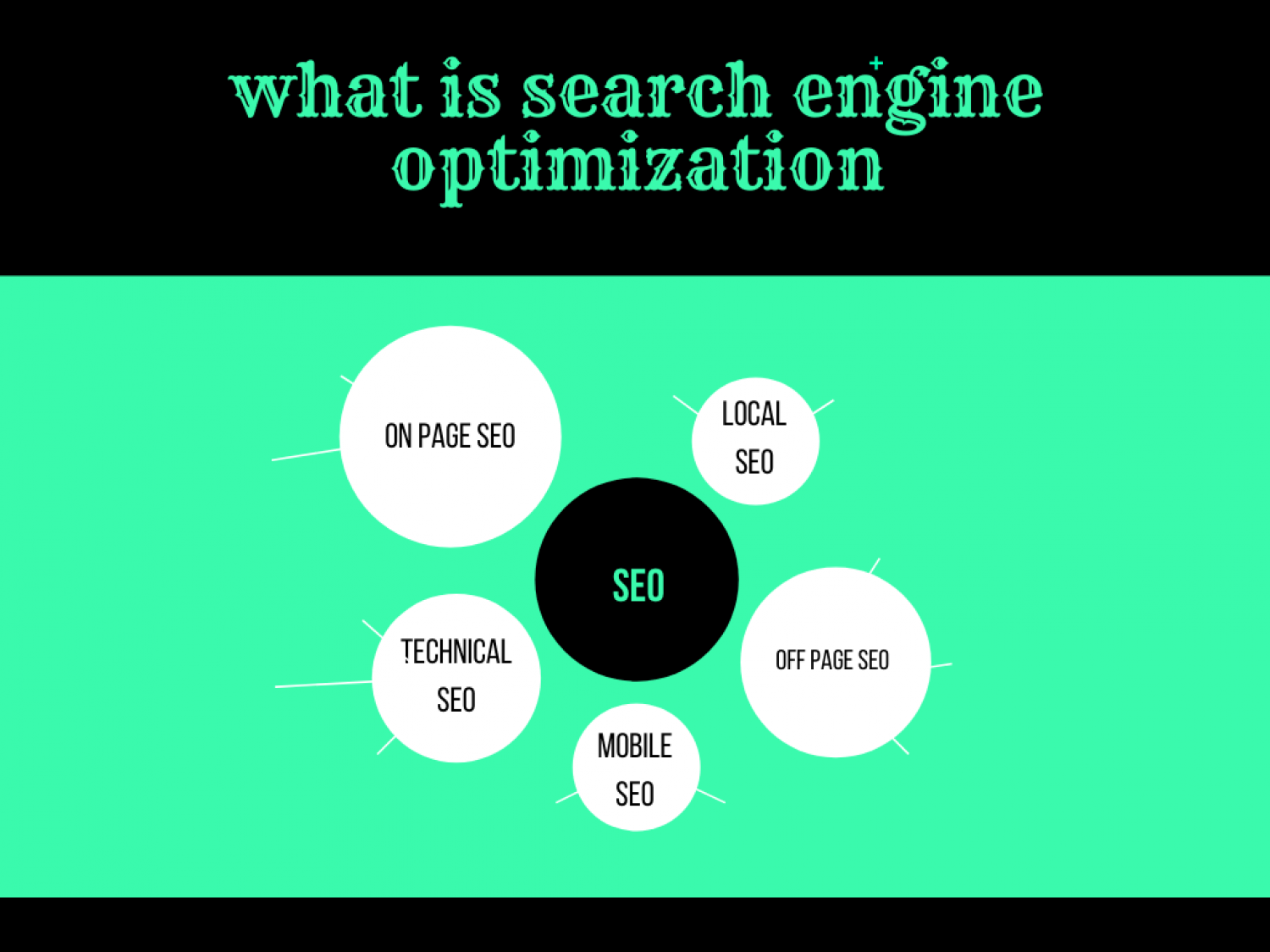 SEARCH ENGINE OPTIMIZATION Infographic