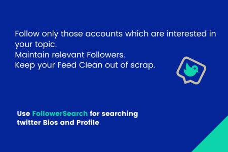 Search Twitter Bios and Profile Infographic