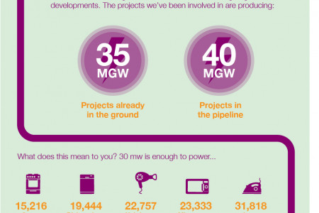 Securing a Sustainable Future Through Renewable Energy Sources Infographic