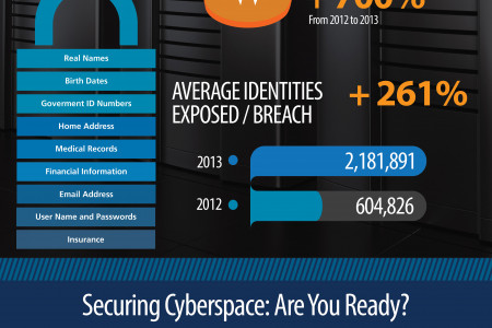 Securing Cyberspace Infographic