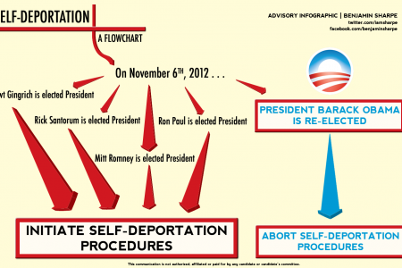 Self-Deportation: A Flowchart Infographic