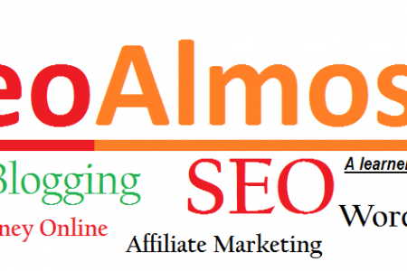 SEO Almost - Learn Blogging And SEO Infographic