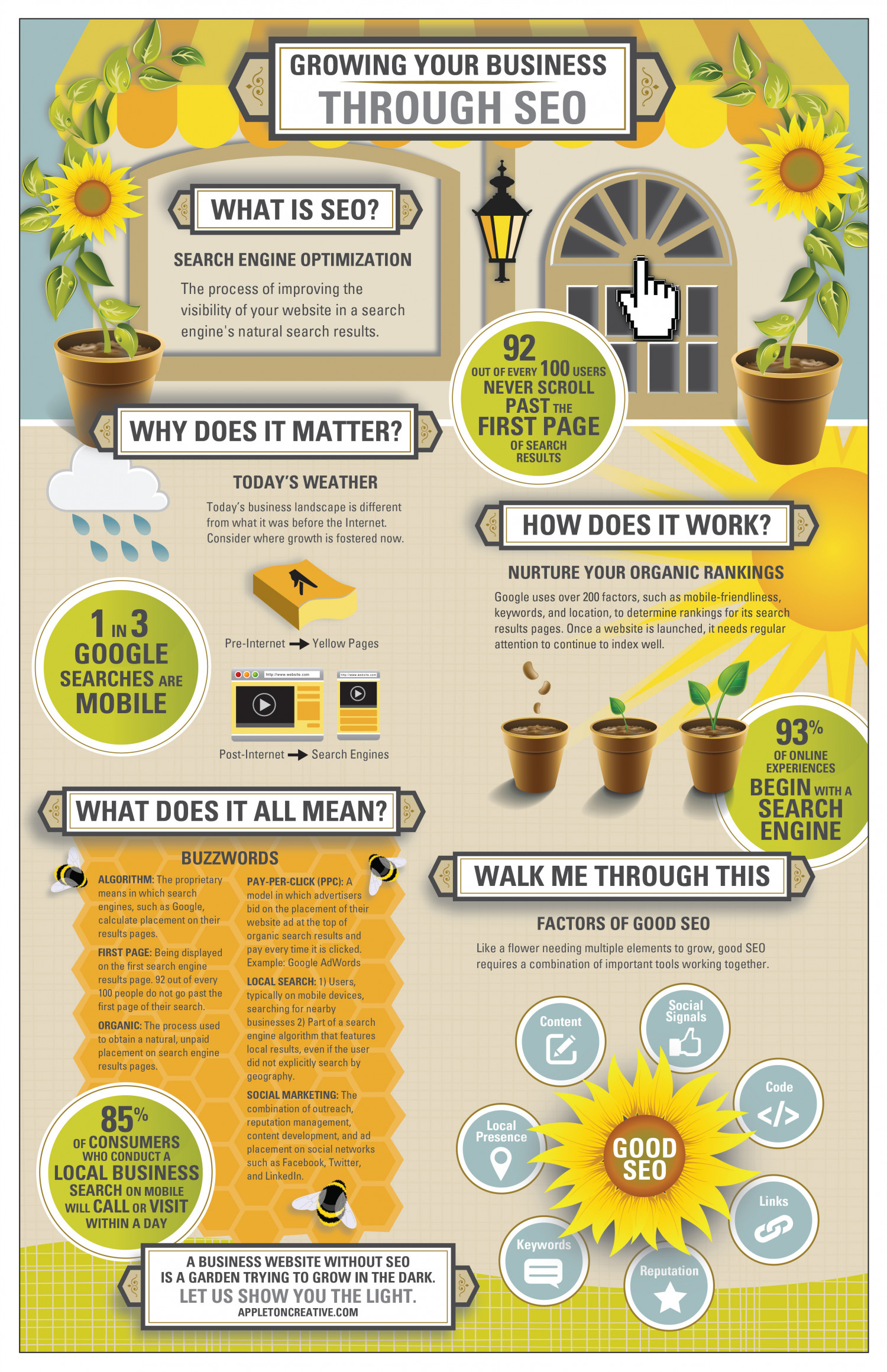 Growing Your Business Through SEO  Infographic