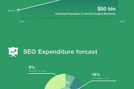 SEO Market Analysis 2013 Infographic