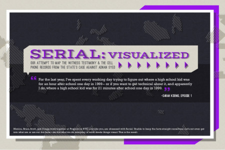 Serial Podcast Visualized Infographic