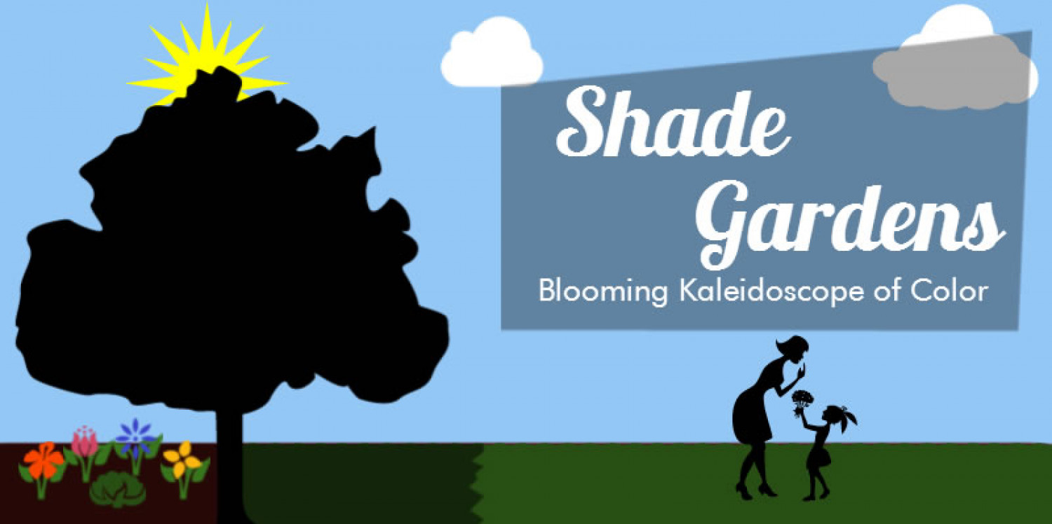 Shade Gardens - Blooming Kaleidoscope of Color Infographic