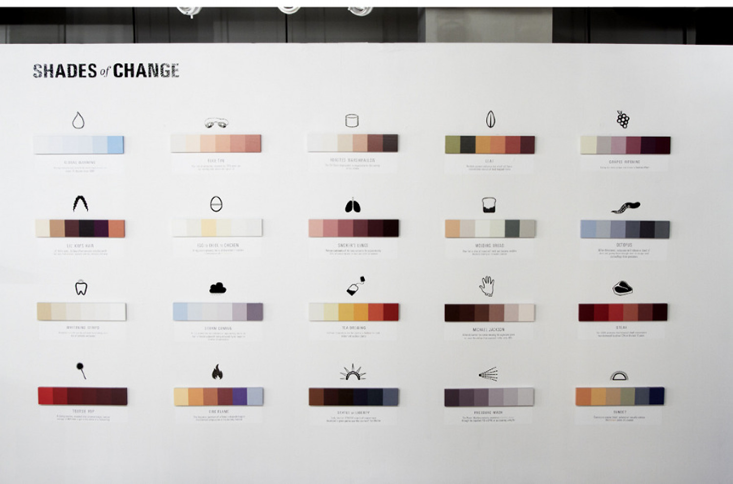Shades of Change Infographic
