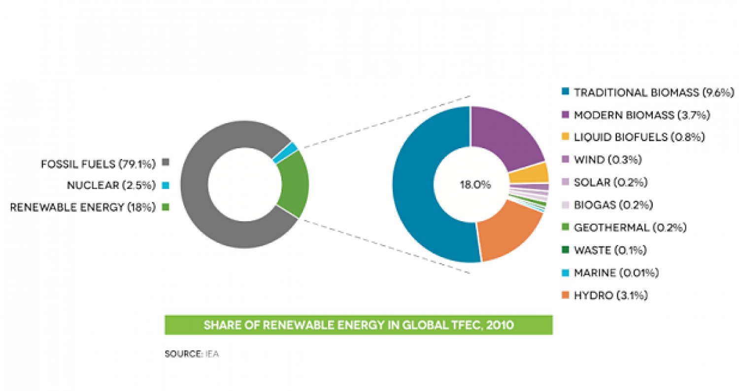 Share of renewable energy in global TFEC,2010 Infographic