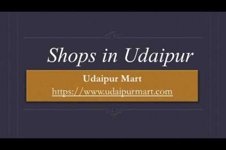 Shops in Udaipur Infographic