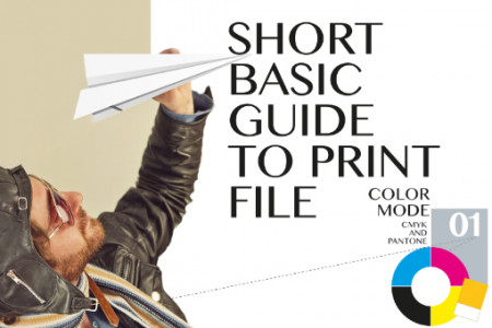 Short basic guide to print file Infographic