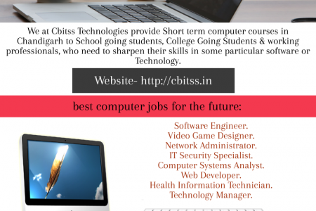 Short term computer course in Chandigarh Infographic