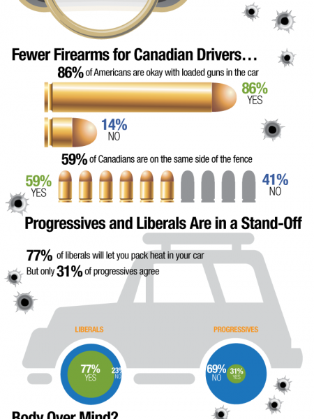 Should Loaded Guns be Allowed in Cars? Infographic