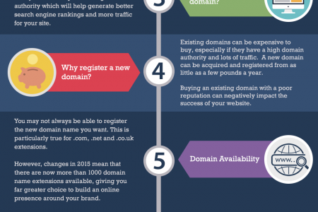 Should You Choose a New or Used Domain? Infographic