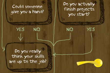 Should You DIY Or Hire A Pro Infographic