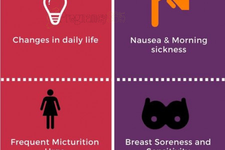 signs and symptoms Pregnancy Infographic