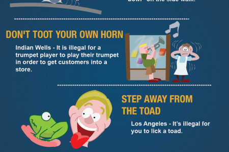 Silly Laws in California Infographic