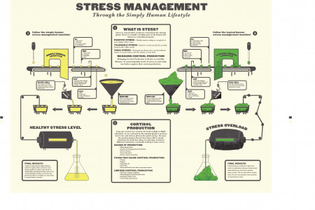 Simply Human Stress Management Infographic