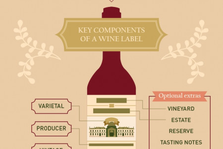 Sip and Savor: Your Guide to Wine Tasting Infographic