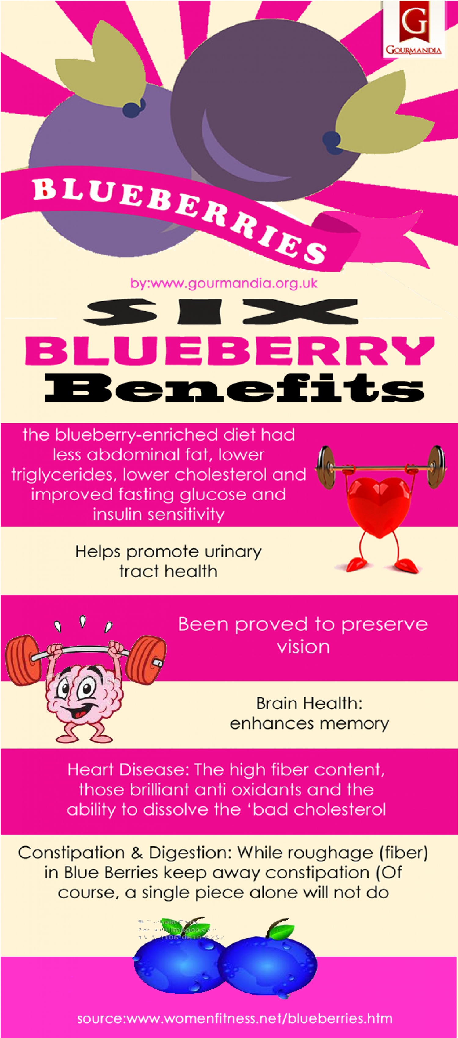 Six Blueberry Benefits Infographic
