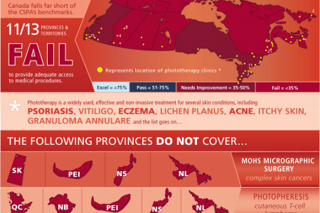 Skin Deep - A Report Card on Access to Dermatological Care in Canada Infographic
