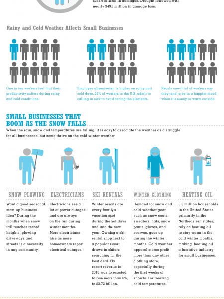 Small Biz Weathers the Storm  Infographic
