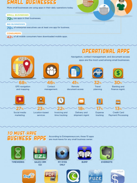 Small Business AppNation  Infographic