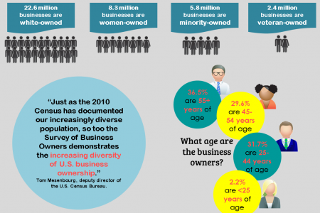 Small Business Ownership in the US Infographic