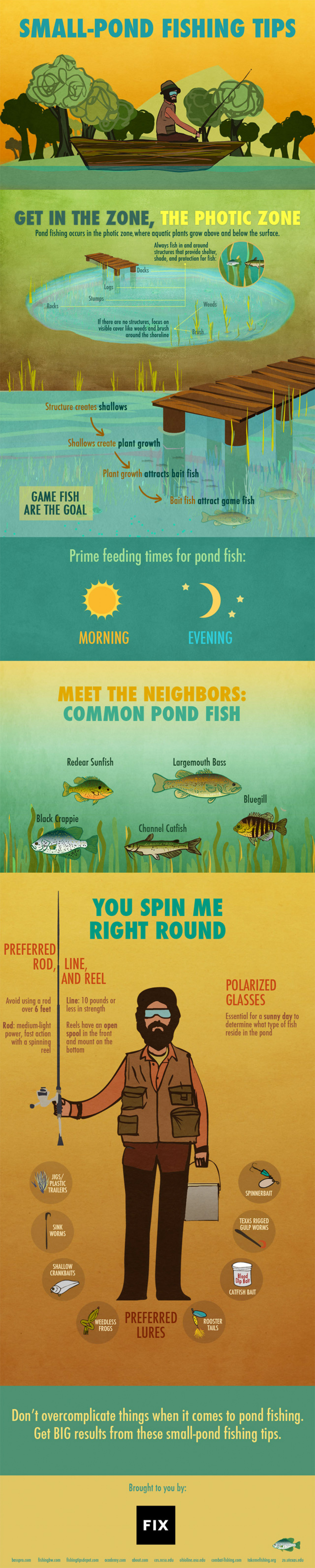 Small Pond Fishing Tips Infographic