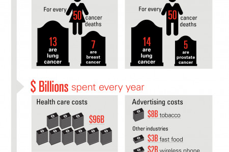 Smoking Costs and Casualties Infographic