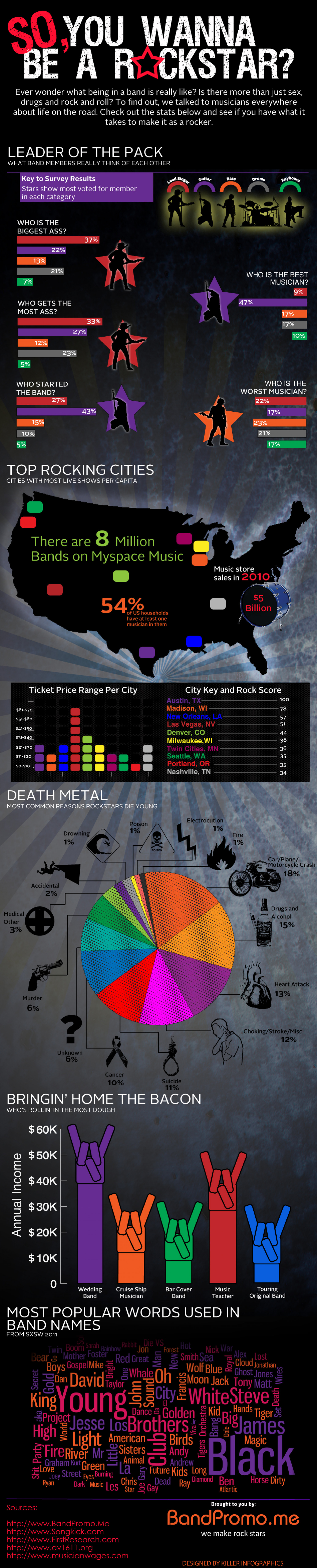 So You Want to be a Rockstar? Infographic
