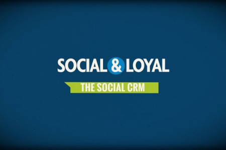 Social & Loyal Infographic