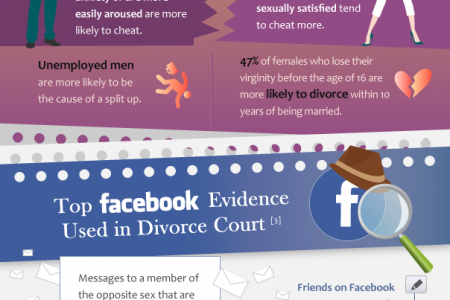Social Cheating: A Look at Social Media's Influence on Infidelity Infographic