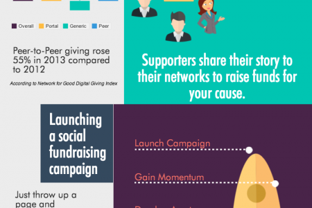 Social Fundraising Campaigns Infographic