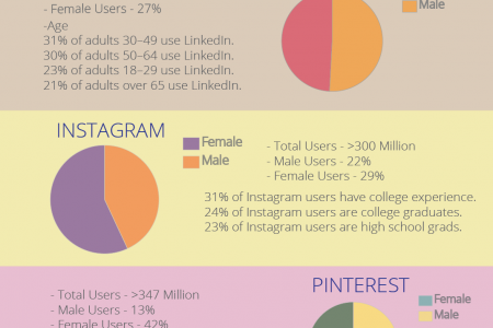 Social Media User Demographics Infographic