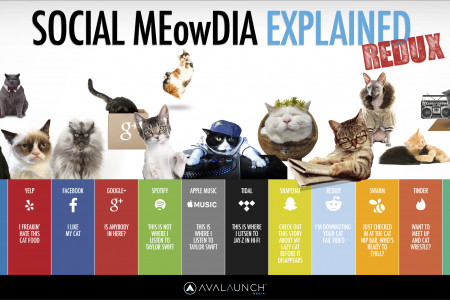 SOCIAL MEowDIA EXPLAINED REDUX Infographic