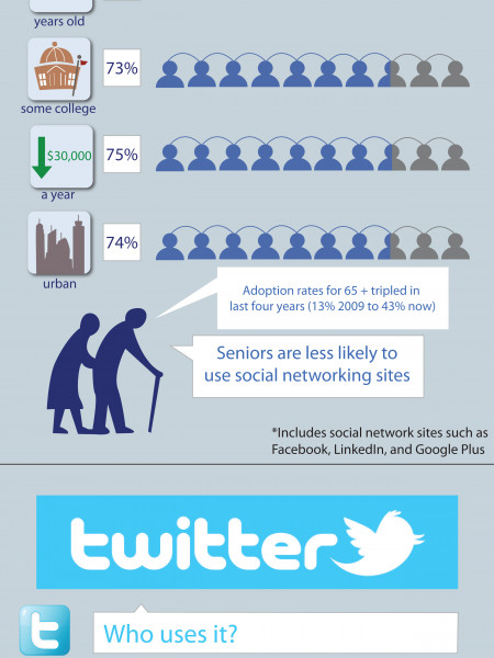 Online Adults and Social Networking Infographic
