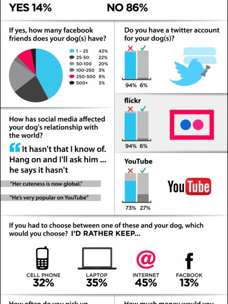 Social Networking and Man's Best Friend Infographic