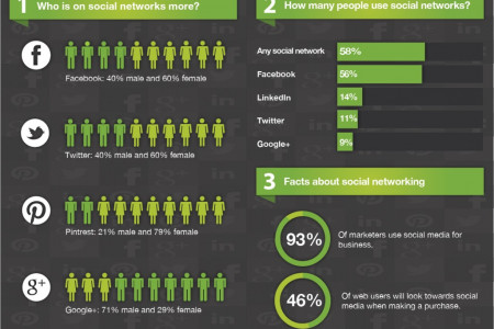 Social Networking Stats Infographic