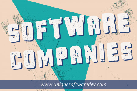 Software Companies in Dallas Texas Infographic